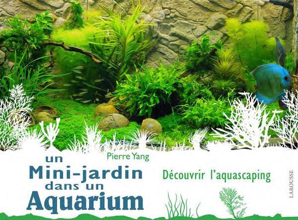 Un mini jardin dans un aquarium - LR PRESSE