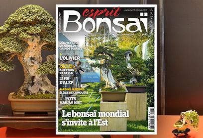 Esprit Bonsaï n°97 Décembre-Janvier 2019 Le bonsaï mondial s'invite à l'Est