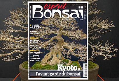 Esprit Bonsaï n°98 Février-Mars 2019 Kyoto à l'avant-garde du bonsaï