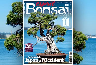 Esprit Bonsaï n°100 Juin-Juillet 2019 Du Japon à l'Occident