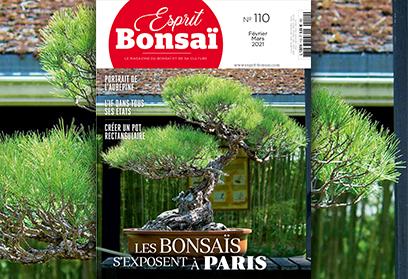Esprit Bonsaï n°110 Février Mars 2021 - Les bonsaïs s'exposent à Paris