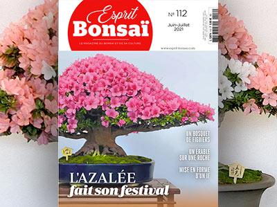 Esprit Bonsaï n°112 Juin-Juillet 2021 - L'azalée fait son festival