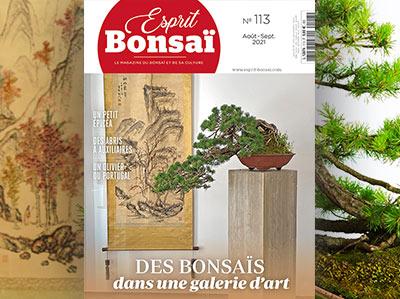 Esprit Bonsaï n°113 Août-Septembre 2021 - Des bonsaïs dans une galerie d'art